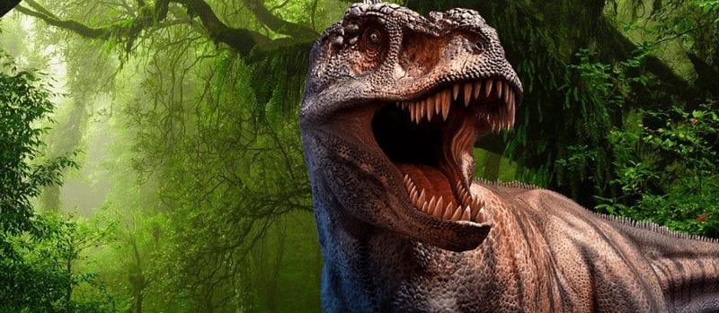 Trein naar World of Dinos