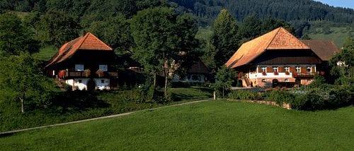 Trein naar Donaueschingen